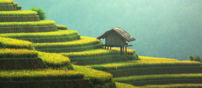 Kulturelle Bestattungen in Hügeln